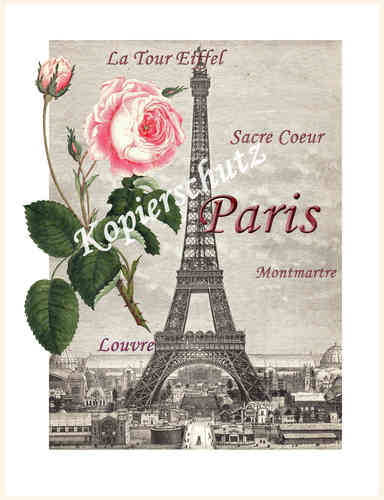 Eifelturm Rose Paris Bild Shabby Chic Fineartprint